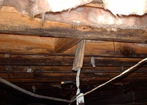 Rotting floor joist wood in a crawl space