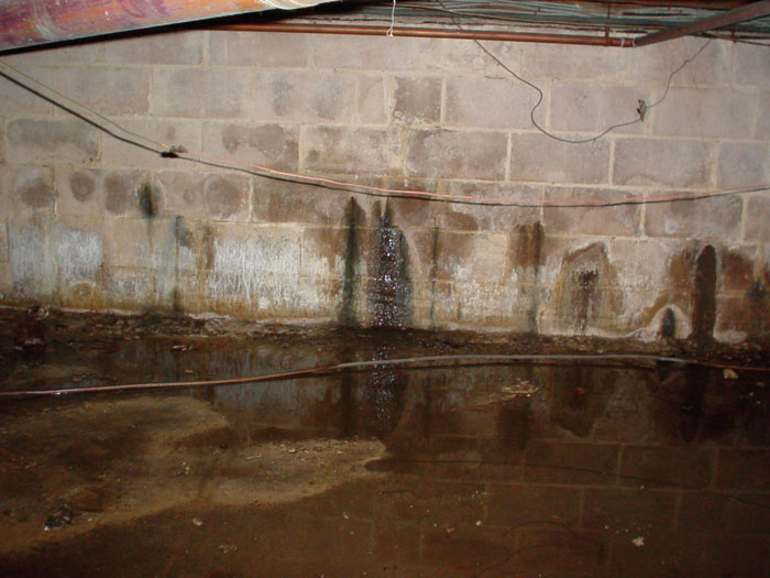 Damp Proofing The Outside Foundation, How To Seal A Damp Basement Wall