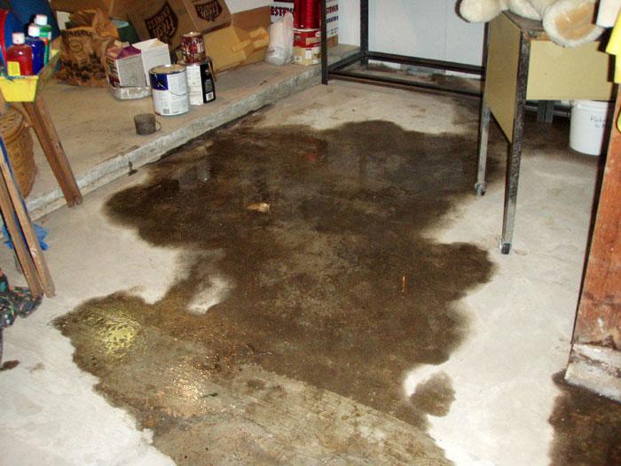 Bat Flooring Damaged By Rot