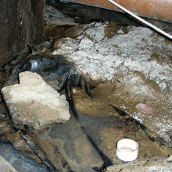 Mold growing on a dirt floor in a crawl space