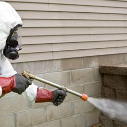 applying pesticides around a home