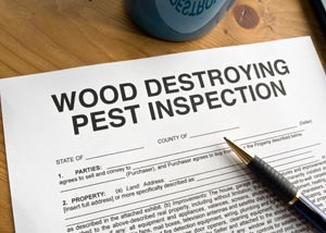Wood destroying pest inspection form for a crawl space