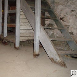 a wet basement with rotting wood and posts and a waterproof coating coming off the walls.