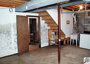 A basement finished with drywall that has grown mold.