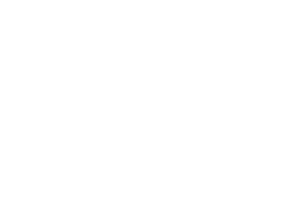 Serving Buffalo Since 1985