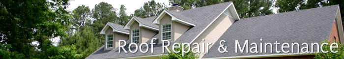Roof Repair and Maintenance in CT, including Bethel, Redding & Danbury.