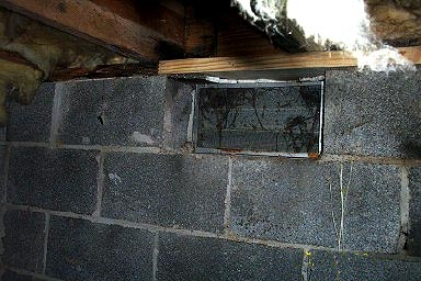 Damaged foundation due to mold