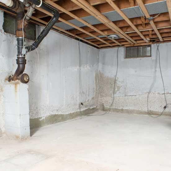 Treehouse generates leads for basement waterproofing