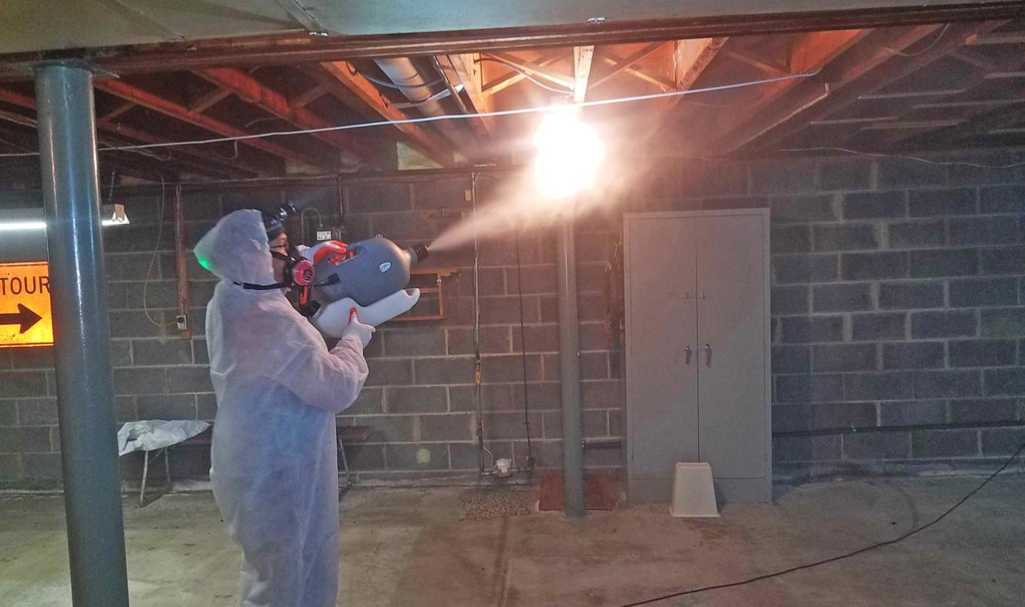 Mold removal in Central NJ