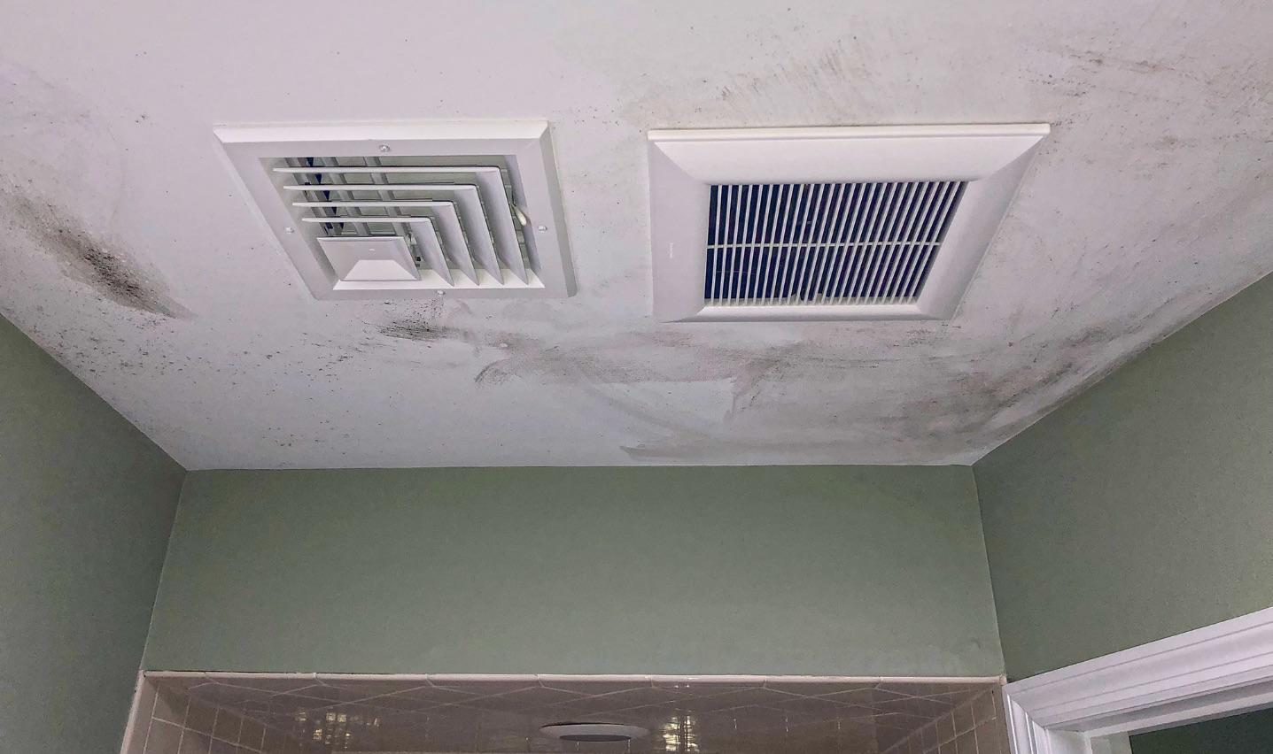Bathroom Mold removal in Central NJ