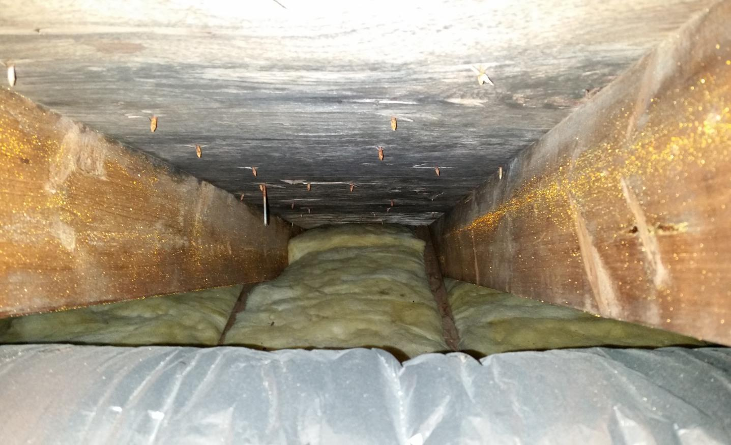 Basement Mold removal in Central NJ