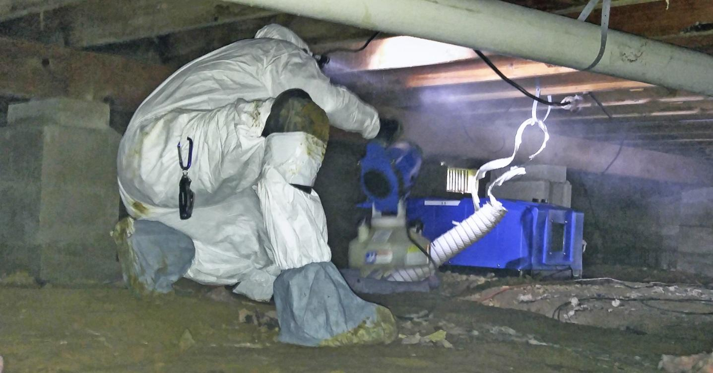 Crawl Space mold removal in Central NJ