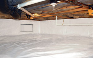 Properly sealing a crawl space can't prevent mold growth and odors