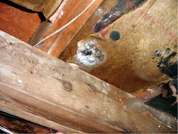 Crawl Space Moisture Control - Regional Waterproofing, Inc. - North Carolina