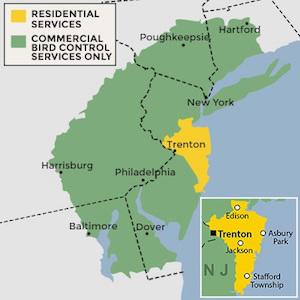 New Jersey wildlife removal service area