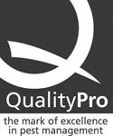 qualitylogoweb