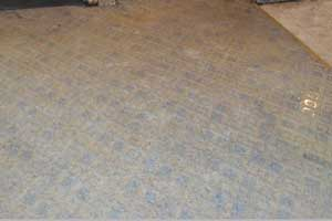 Damp slab floor