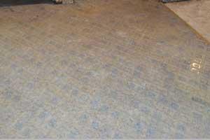 Damp slab floor