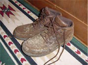 Leather Shoes Ruined by Mold in a Grand Junction Basement