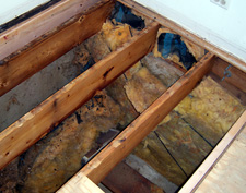 Rotting Crawl Space in Clifton