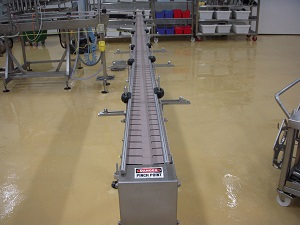 Conveyor Sanitation