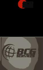 BCG Services Logo