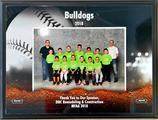 Sponsor of the 2018 MYAA DBC Bulldogs Baseball Team