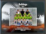 Sponsor of the 2019 MYAA DBC Bulldogs Baseball Team