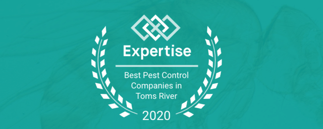 Cowleys Wins Expertise Award for Best Pest Control Company in Toms River