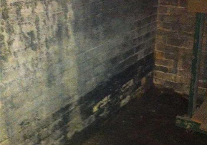 Historic Home Basement Fix in London, ON - Before Photo