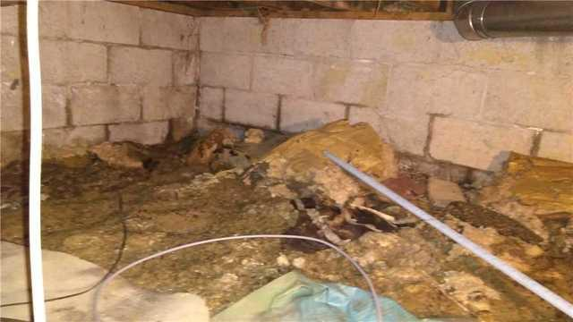 Sump Pump installed in a Tecumseh, ON Crawl Space
