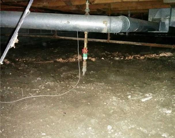 Crawl Space Makeover in Port Lampton, ON