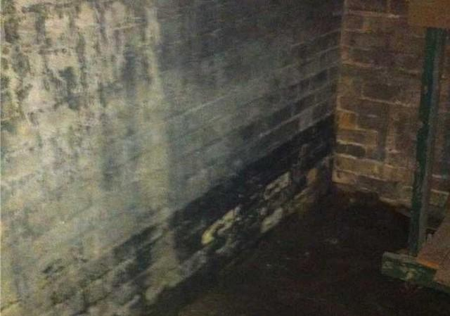 Historic Home Basement Fix in London, ON