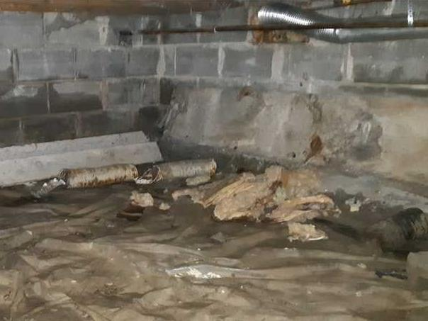 Fixing a Damp Crawl Space in Wallaceburg, ON