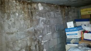 The Solution for a Wet Cellar in Amherstburg, ON