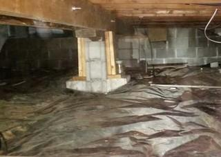 One Crawl Space, Many Problems in Windsor, ON