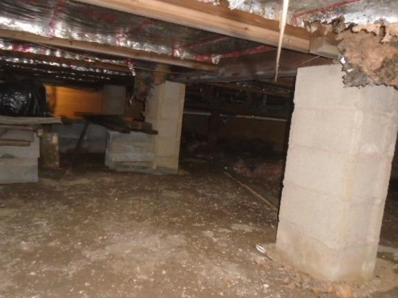 Crawl Space Repair in Mamaroneck, NY - Before Photo