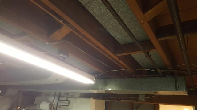 Total Basement Finishing Ceiling Tiles in Darien, CT