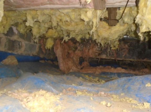 Insulation Repair