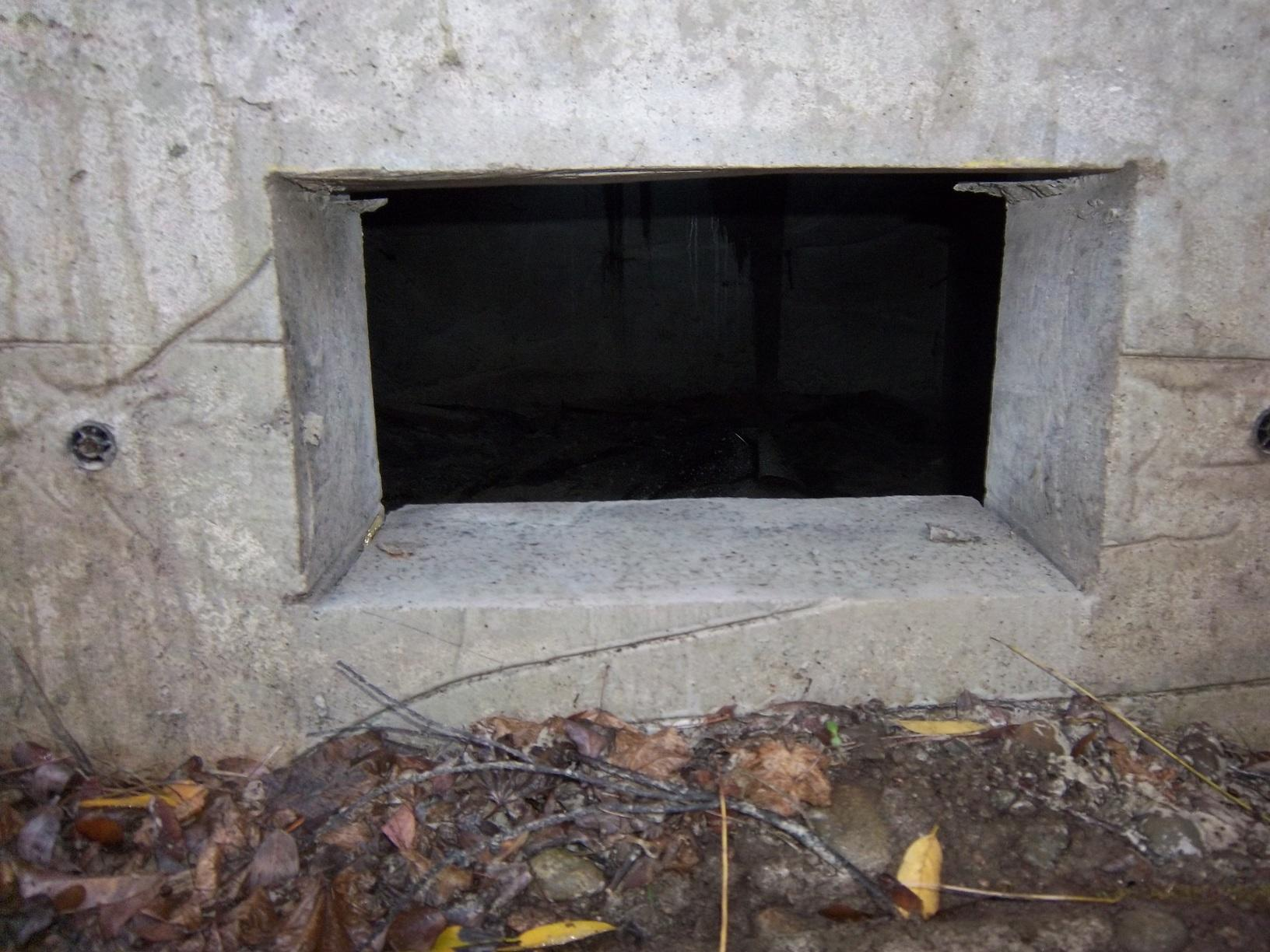 Crawl Space Vent Cover in Bucoda, Washington - Before Photo