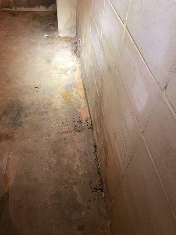 Basement Waterproofing in Philadelphia, MS