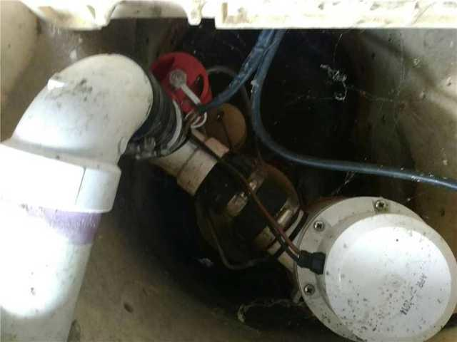 TripleSafe Sump Pump Maintenance, Excelsior MN