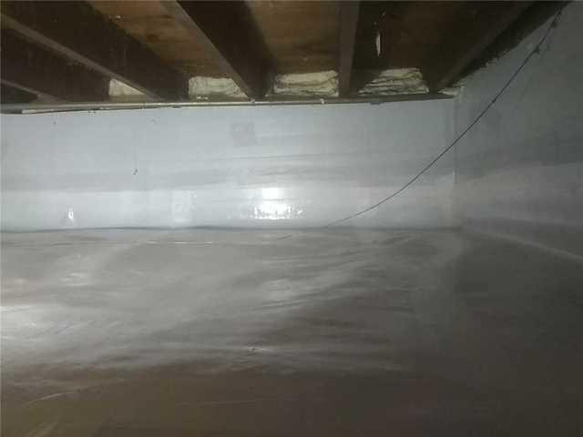 New Homeowner Concerned with Mold in Robbinsdale, MN Crawl Space