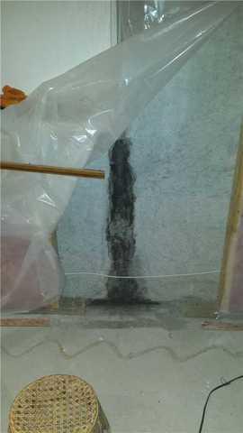 Flexispan Wall Crack Repair