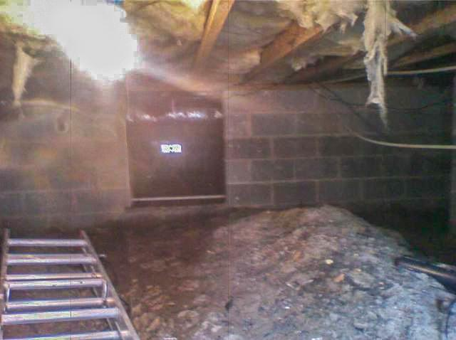 Pest and Humidity Control in Margate City, NJ