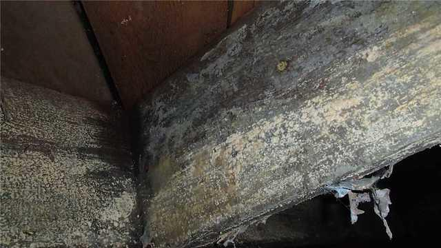 Mold Removal from Crawlspace in Linconlnton, NC