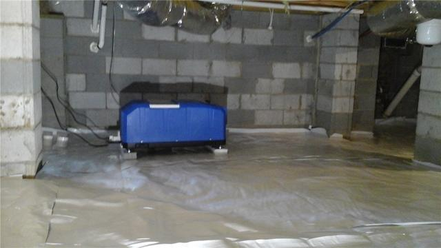 Mold Remediation & Waterproofing in Sherrills Ford, NC