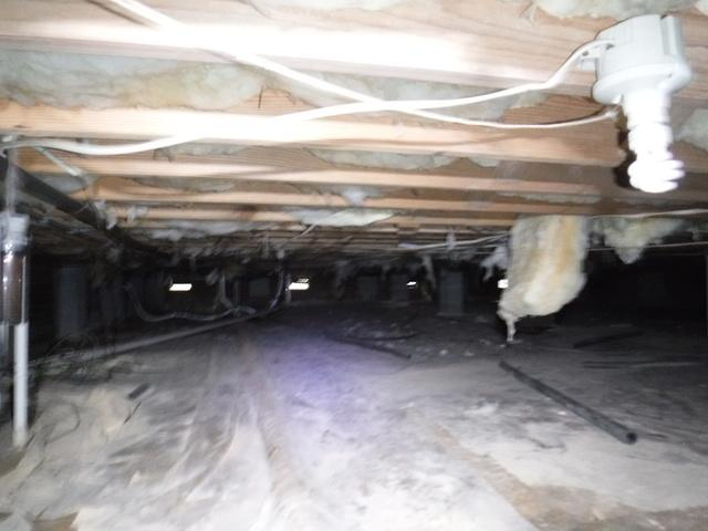 Fungal Growth and Flooding Crawlspace in Locust, NC