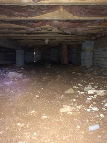 Mold Removal Waterproofing in Concord, NC