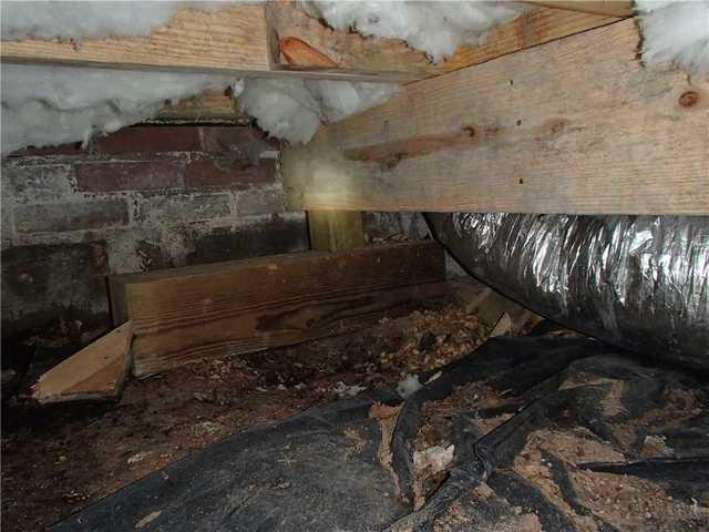 Crawlspace Mold Remediation and Waterproofing in Gastonia, NC